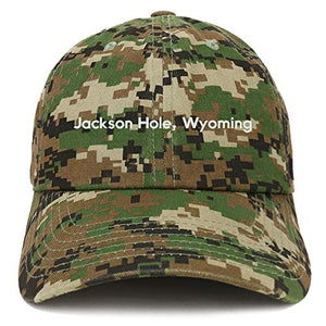 Trendy Apparel Shop Jackson Hole Wyoming Cotton Unstructured Dad Hat