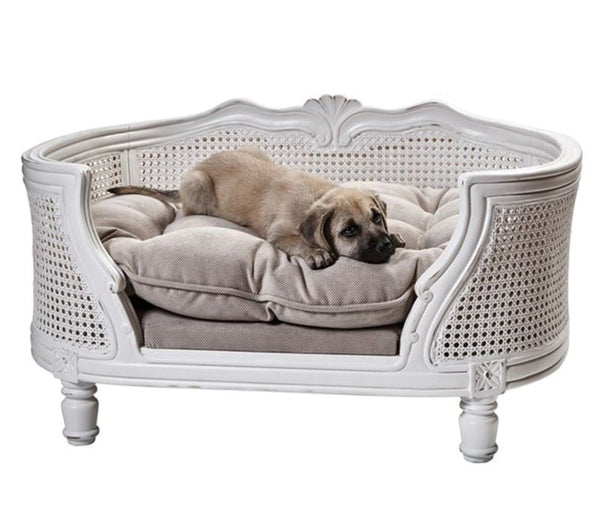 Elegant Cat & Dog Sofa - allurdo