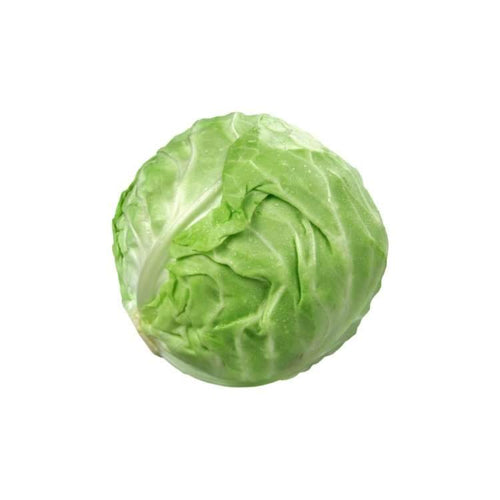 Organic Green Cabbage, Small to Medium - Each Fresh Organic Produce Fresh Organic Produce