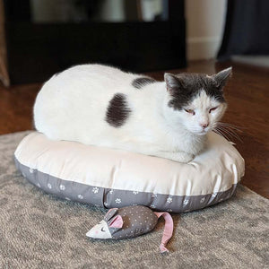 Kitty Bed & Mouse Toy