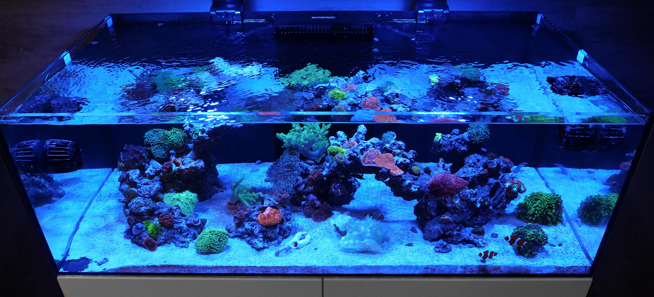 Waterbox Aquariums Europe