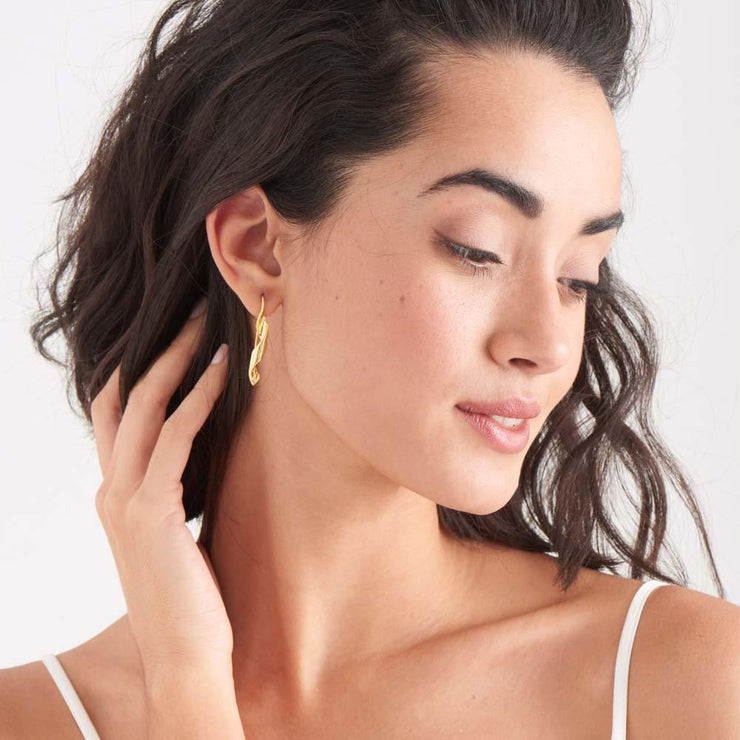 Helix Hook Earrings - Ania Haie Jewellery