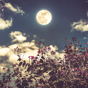 Emotional Healing: Full Moon Ritual with the Archangels - Soulscented