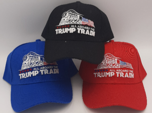 All Aboard the Trump Train 2020 Hat