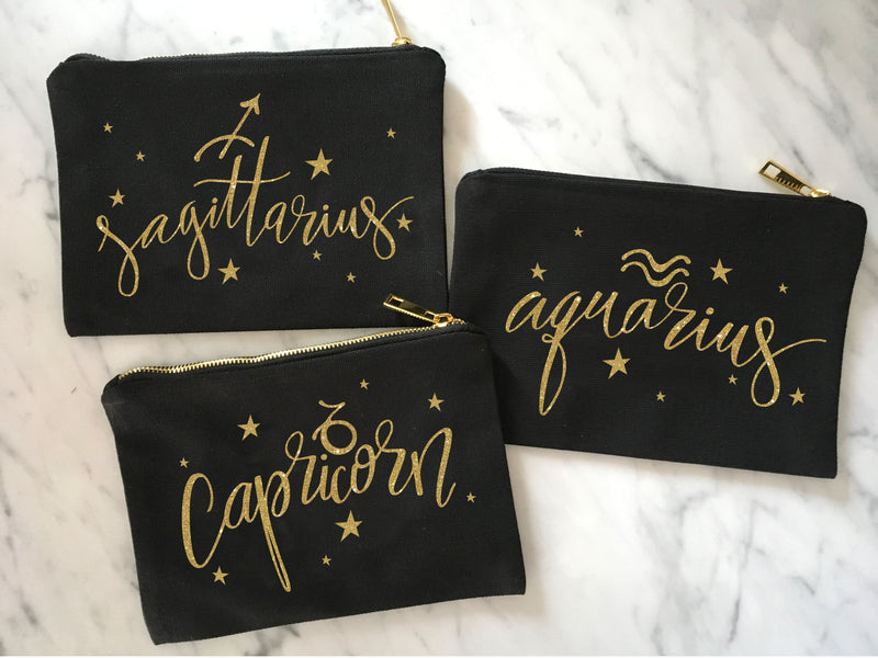 aquarius, aqaurius makeup bag, aquarius gift