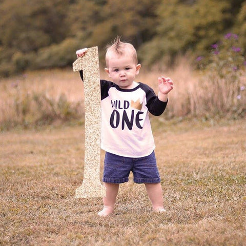 Wild One Birthday Shirt, First Birthday Shirt, Where The Wild Things Are First Birthday
