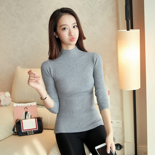 Turtleneck Pullovers