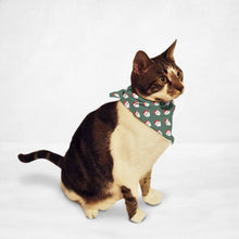 Load image into Gallery viewer, Christmas Themed Cat & Dog Bandana