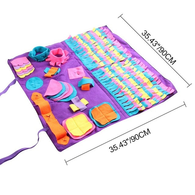 Sensory Training Toy