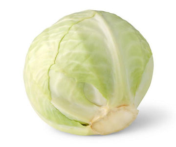 Large White cabbage (~2kg)