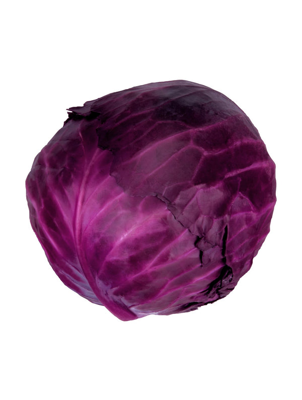 Large Red cabbage (~2kg)