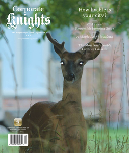 #35 (Winter 2011 Sustainable Cities Issue) *Digital Copy*