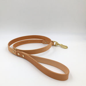 Artisan Leather Dog Lead Collection - Pampered Paws.shop