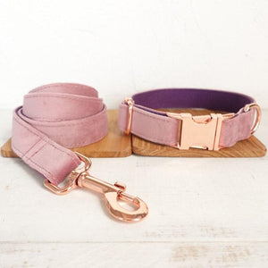 Baby Pink Dog Lead and Collar  - Pampered Paws.shop