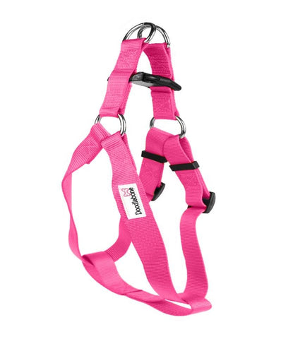 Bold Range Harness & Lead Set - Pampered Paws.shop