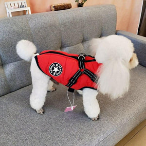 Dog Jacket Cotton Padded Jacket Harness - Pampered Paws.shop