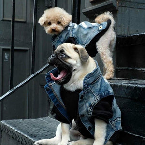 Denim Vest - Pampered Paws.shop