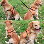 Dog Harness with Safety Reflective Strips - Pampered Paws.shop