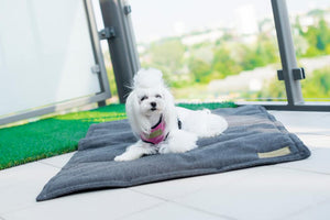Dog Mat - Pampered Paws.shop