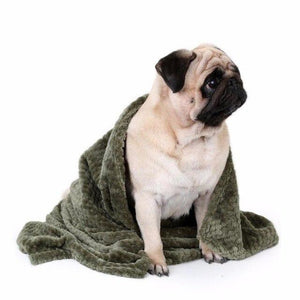 Dogs Warm Blanket - Pampered Paws.shop