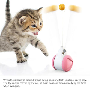 Feather and Ball rolling toy - Pampered Paws.shop