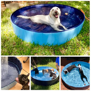 Indoor/Outdoor Portable Swimming Pool/Bath Collapsible - Pampered Paws.shop