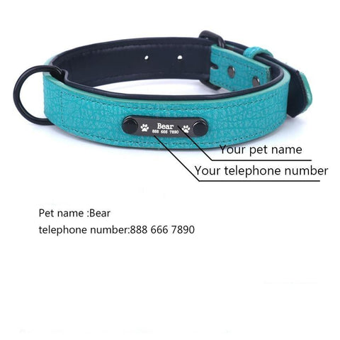 Personalised Dog Collar - Pampered Paws.shop