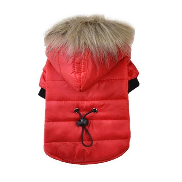 Puffer style Jacket with Faux Fur Hood - Pampered Paws.shop