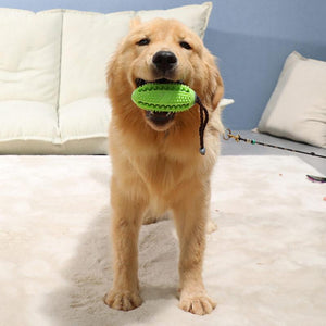 Rubber Ball Chew Toy - Pampered Paws.shop