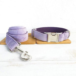 The Violet - Pampered Paws.shop