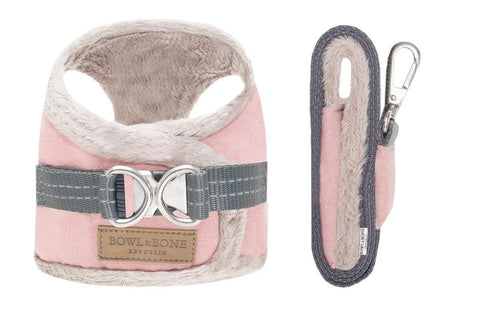 YETI Harness & Lead - Pampered Paws.shop