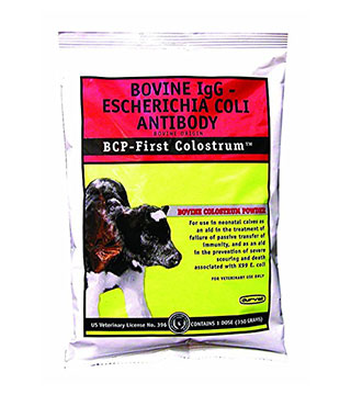 First Colostrum - Bovine - 50 g - L