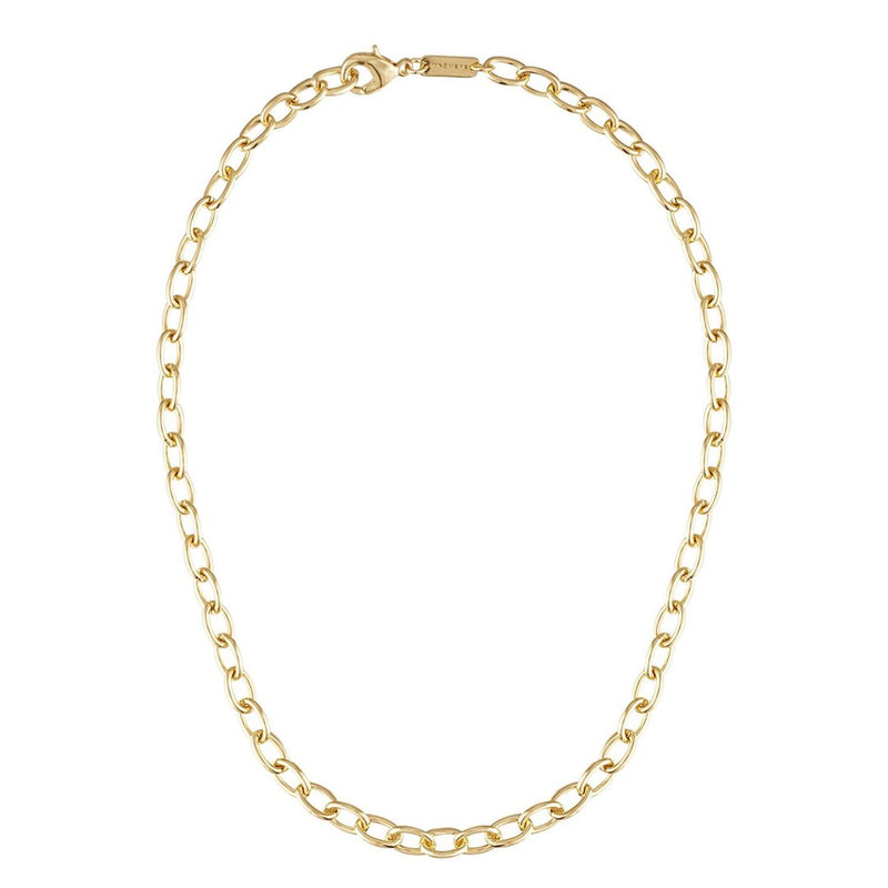 Oval Link Chain Necklace in Gold