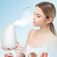 Load image into Gallery viewer, Customized nano Nourishing face ionic mini facial steamer