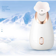 Load image into Gallery viewer, Wholesale New Design Portable Nano Sprayer Face Sauna Moisturizer Facial Steamer