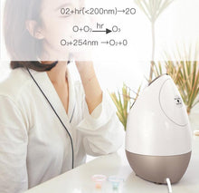 Load image into Gallery viewer, Support Sample Ionic Deep Cleansing Mini Aroma Essential Oils Cold Warm Facial Steamer