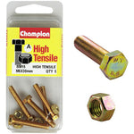 Champion Fully Threaded Set Screws and Nuts 5 x 30mm- BM15