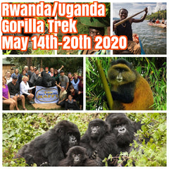 (Sold Out, please email me at rkhearn@gmail.com for waiting list) Happy in Rwanda/Uganda Gorilla Trek May 14th-May 20th 2020 featuring rare Golden Monkey and Gorilla trekking, Kigali city tour, community visits and canoe ride on Lake Bunyonyi