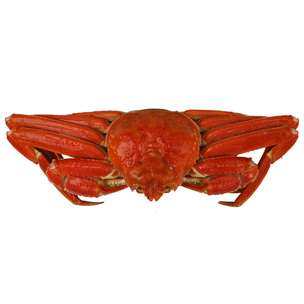 Snow Crab Boiled Whole 450g
