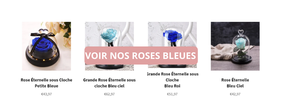 Nos roses bleues