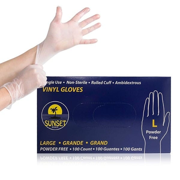 Vinyl Gloves - Powder Free - Case of 1000 Gloves - Two Scents