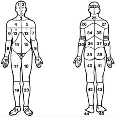 Pain_inventory_anatomical_picture