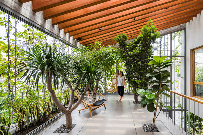 Biophilic Design – One of the Most Significant Design Trends of 2020
