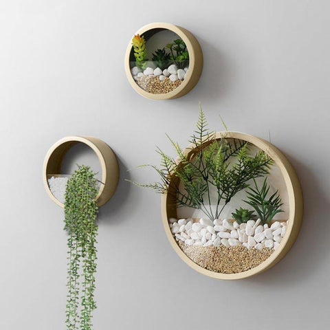 Flower Plus on Bayview - toronto - leaside - hanging succulent planter