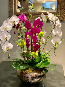 P12 - Luxurious Orchid Arrangement - Flowerplustoronto