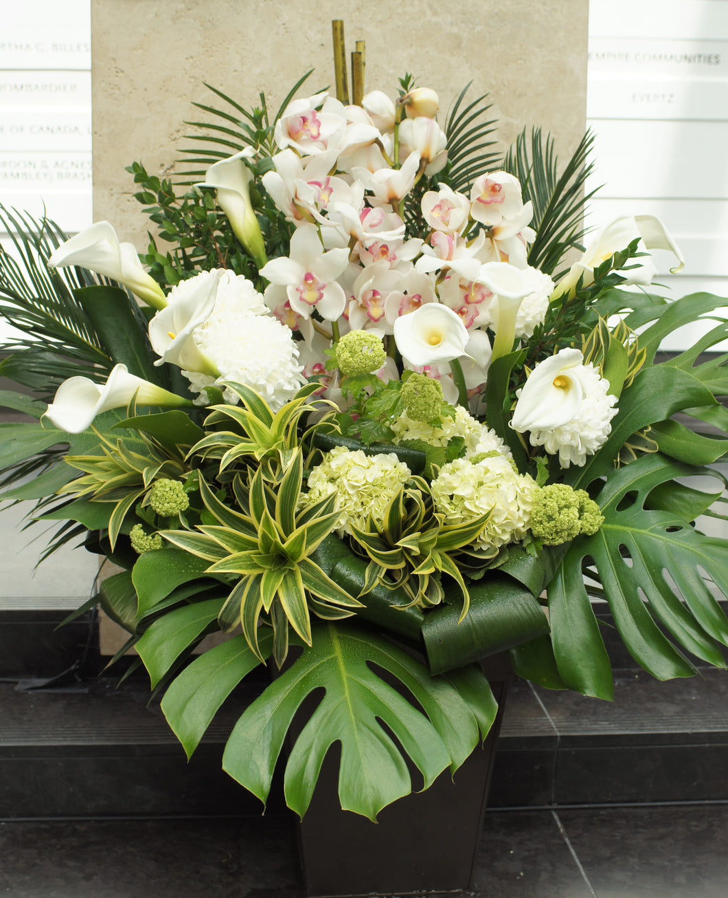 FNV15 - Modern White Cymbidium Arrangement - Flowerplustoronto