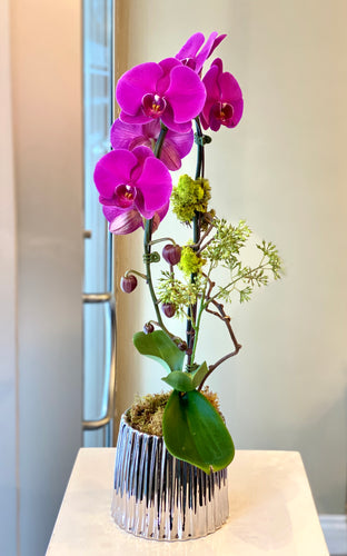P41 - Elegant Purple Orchid Arrangement - Flowerplustoronto