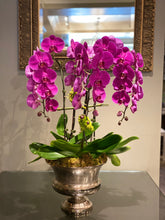 Load image into Gallery viewer, P43 - Luxurious Orchid Arrangement - Flowerplustoronto