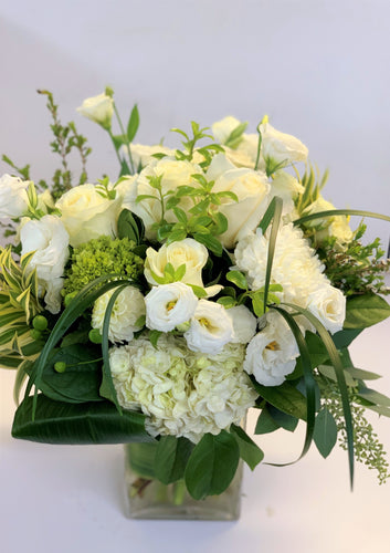 F177 - White and Green Arrangement - Flowerplustoronto