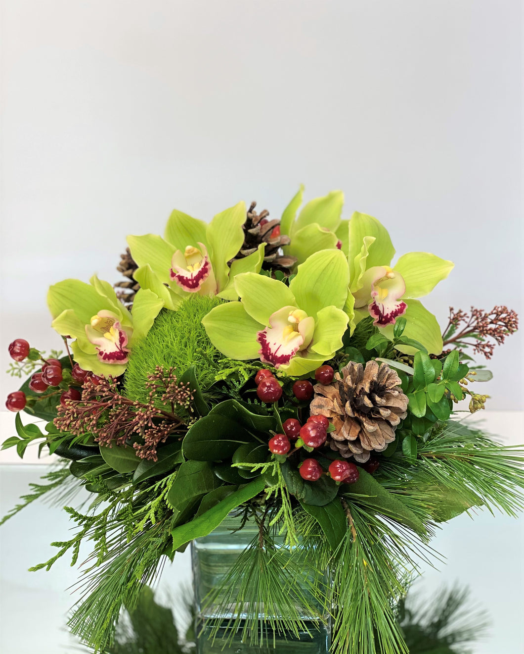 X5 - Lush Holiday Green Cymbidium Arrangement - Flowerplustoronto